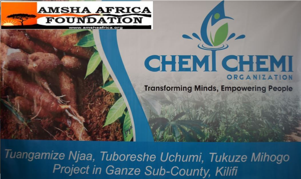 Cassava Value Chain Project in partnership with the Chemi Chemi Organization
